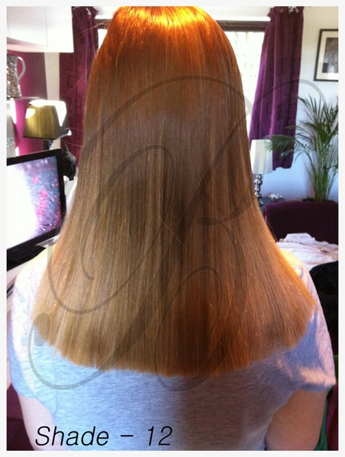 Shade 12 Hair Extensions